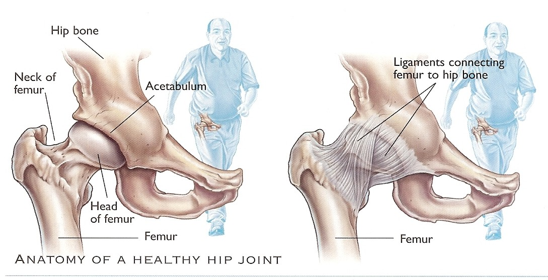 dr-peter-smith-hip-repacement_4