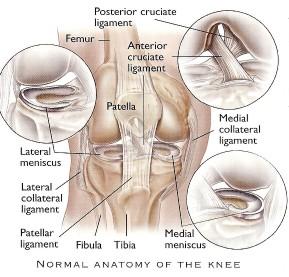 dr-peter-smith-knee-arthroscopy-2