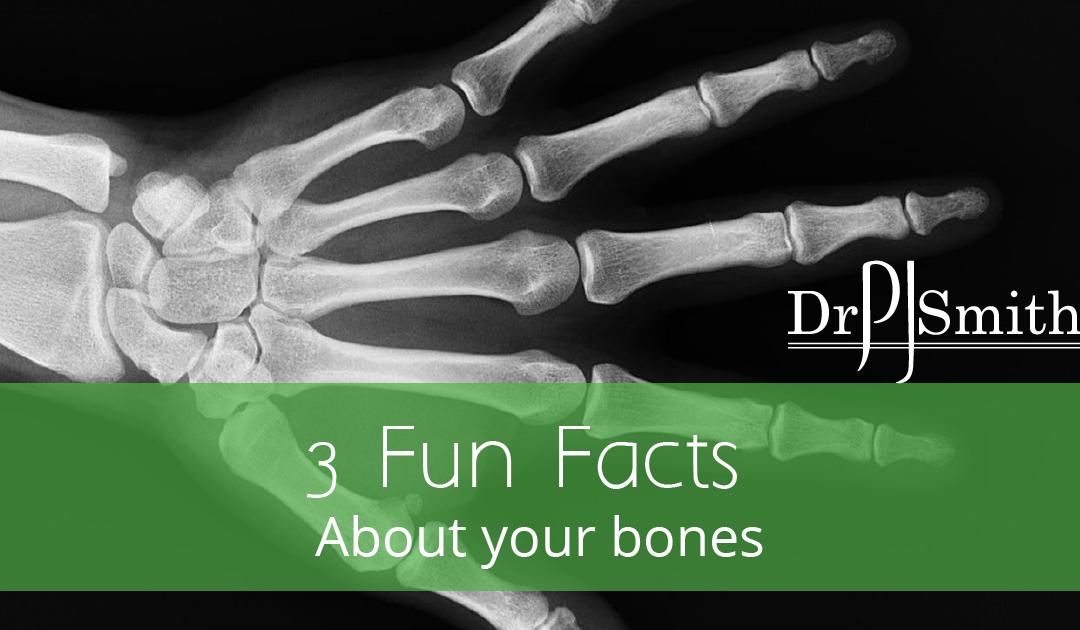 orthosurgeon - fun facts about bones