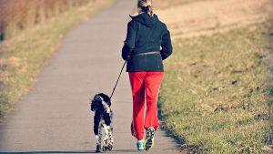 Exercise benefits bones ortho surgeon
